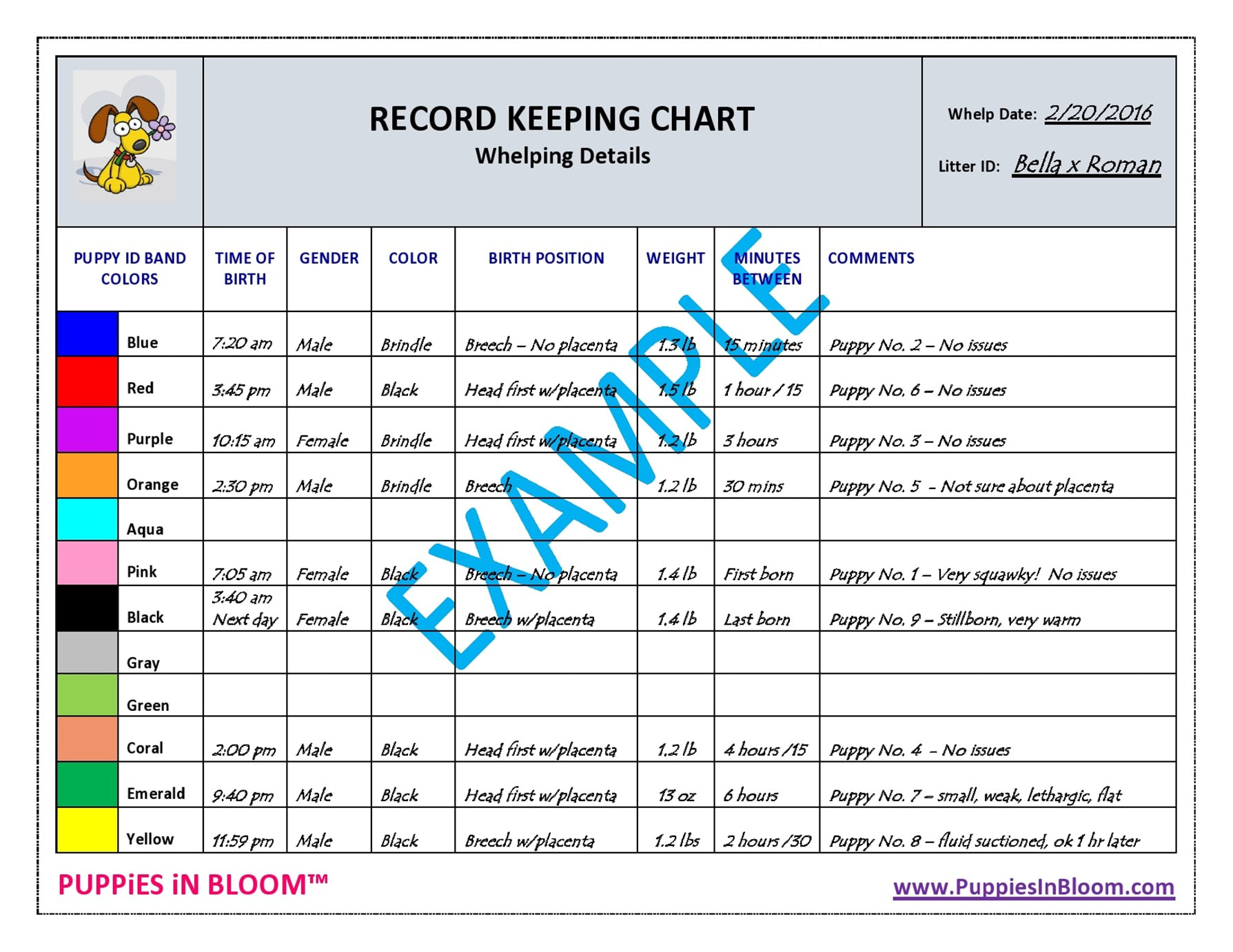 Record Keeping Charts For Breeders With 8 Inch Puppy Collars